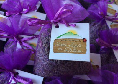 Sacchetti Trasparenze Lavanda dei Sibillini Agriturismo Santa Lucia2