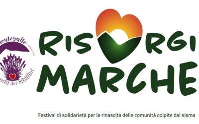 Lavanda dei Sibillini partecipa al Festival Risorgi Marche