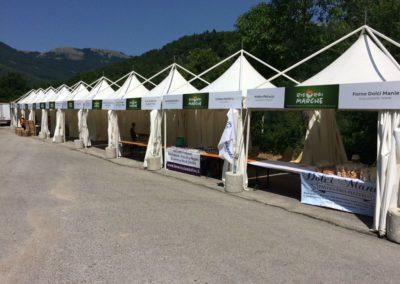 Lavanda dei Sibillini al Festival Risorgi Marche 1