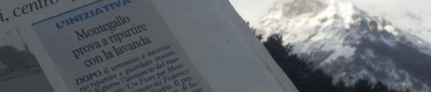 Lavanda dei Monti Sibillini a Montegallo - Dicono di Noi