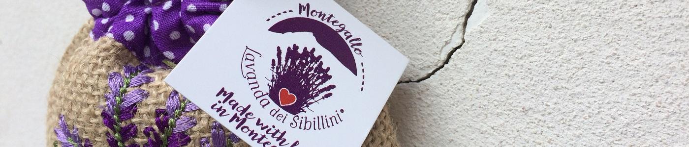 Lavanda dei Monti Sibillini - I Nostri Video