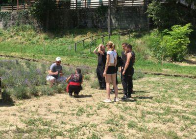 Visita Guidata al Campo di Lavanda dei Sibillini a Montegallo7