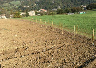 Piantumazione Campo Lavanda dei Sibillini Astorara Montegallo12